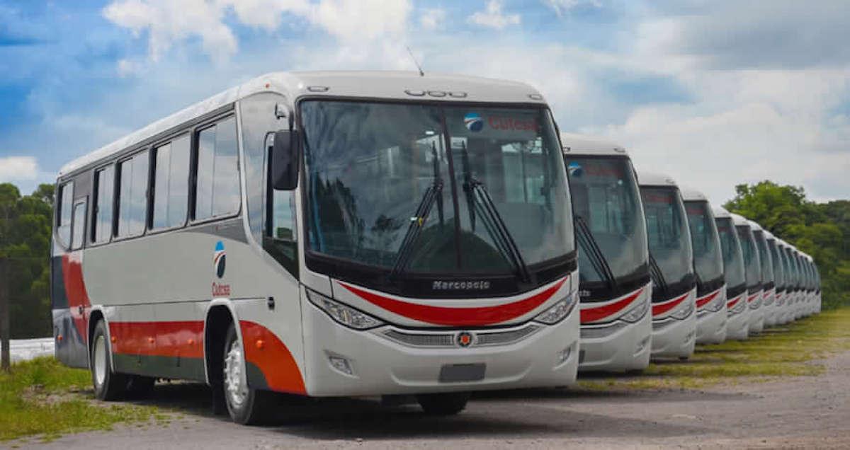 Mercedes nuovi autobus Uruguay